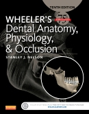 Test-Bank-for-Wheeler's-Dental-Anatomy-Physiology-and-Occlusion-10th-Edition